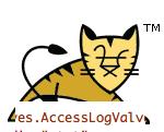AccessLogValve.png